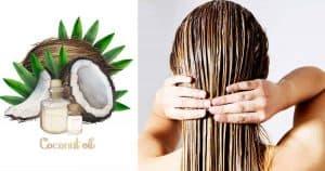 Read more about the article 6 cách dưỡng tóc bằng dầu dừa